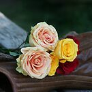 Romance the Roses by Tabitha Borges