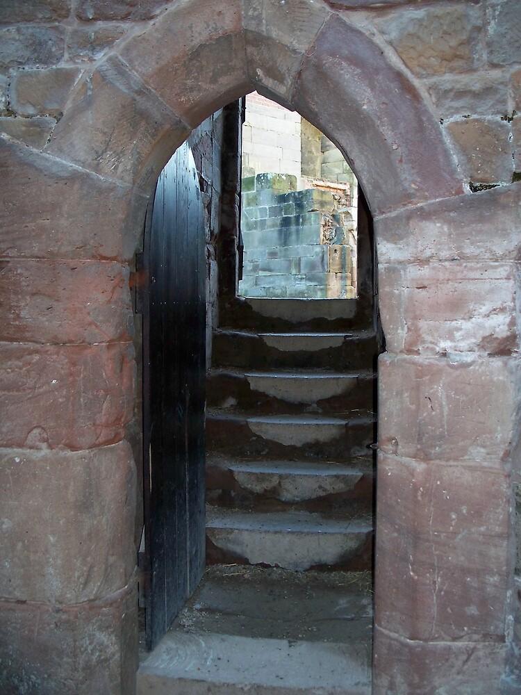 Stafford Castle 2 by robsteadman