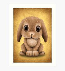 Cute Brown Baby Bunny Rabbit  Art Print