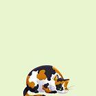 Chubby Grumpy Kitty (Calico) by ArtOfSkuba