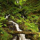 Gibson Mill Waterfall by Steve  Liptrot