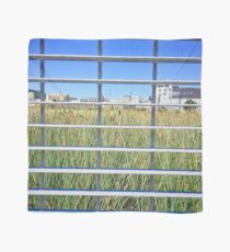 Grass Through The Grate Scarf