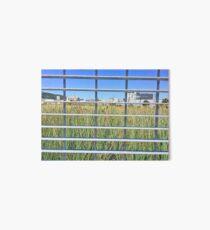 Grass Through The Grate Art Board