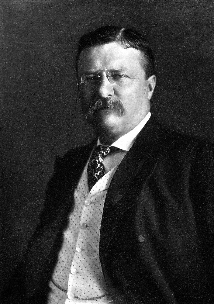 1904 President Theodore Roosevelt by historicimage