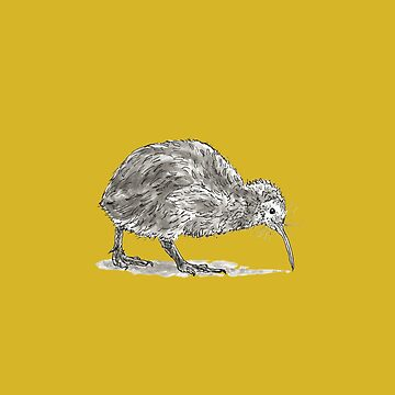Kiwi Bird by dmtab