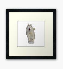 Running Husky Framed Print