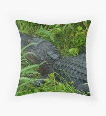 This is Gator country! Throw Pillow