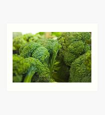 Broccoli Art Print
