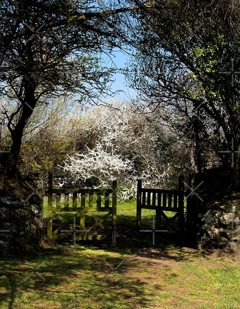 Church Gate by Country  Pursuits