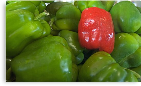 Bell peppers by Larry  Grayam