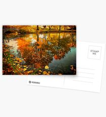 Reflection of the fall Postcards