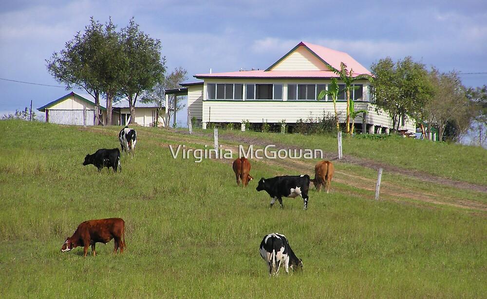 Queensland Scene by Virginia McGowan