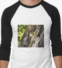 Wood pecker Men's Baseball ¾ T-Shirt