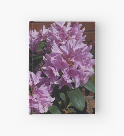 Rhododendron genießt den Sonnenschein Notizbuch