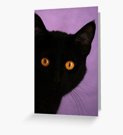 Bright Eye  Greeting Card