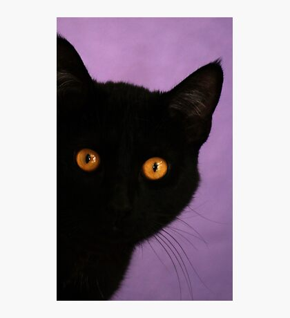 Bright Eye  Photographic Print
