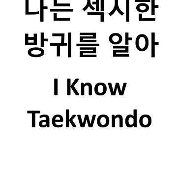 Bad Translation - I Know Taekwondo 나는 섹시한 방귀를 알아 by andrewloable