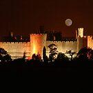 Caernarfon Castle at Night (please view enlarged) by AnnDixon