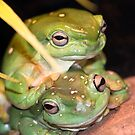 A Green Pair by Peter Pevy