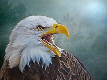 The Call of The Eagle by Brian Tarr