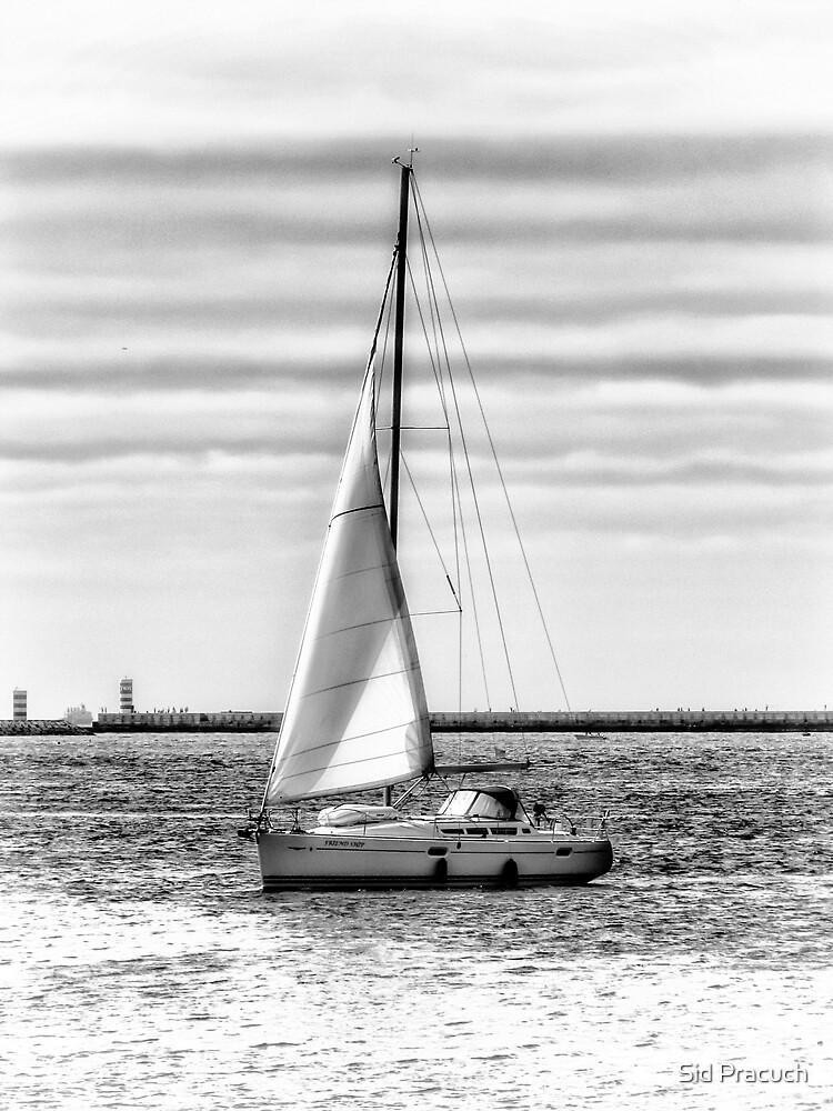 Sailing by Sid Pracuch