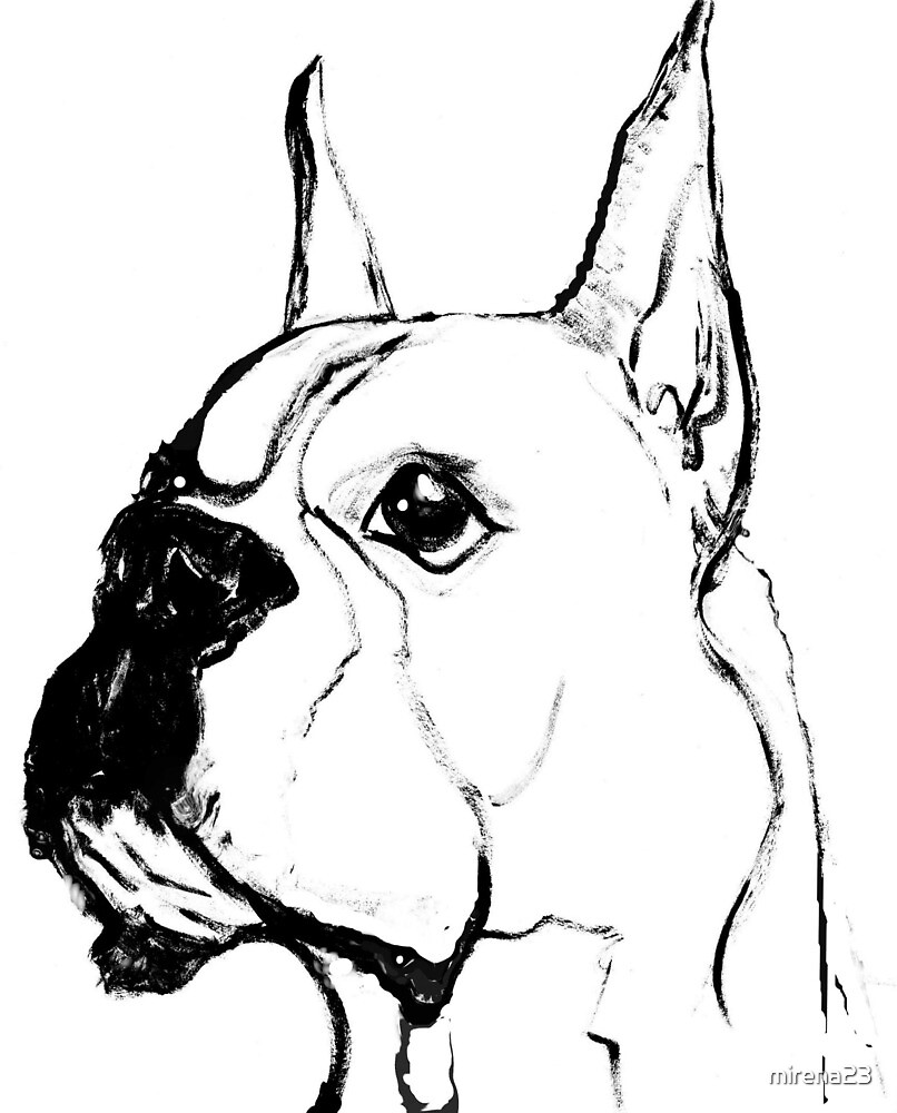 Boxer dog from the book MIss Pearl White by mirena23