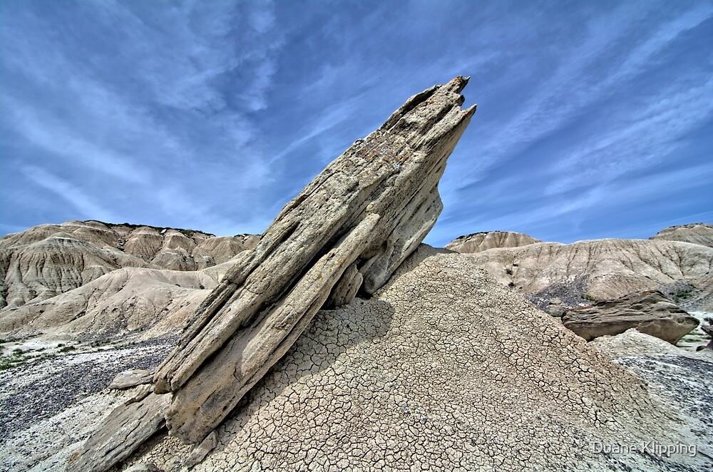 Toadstool Geological Park 4 by Duane Sr