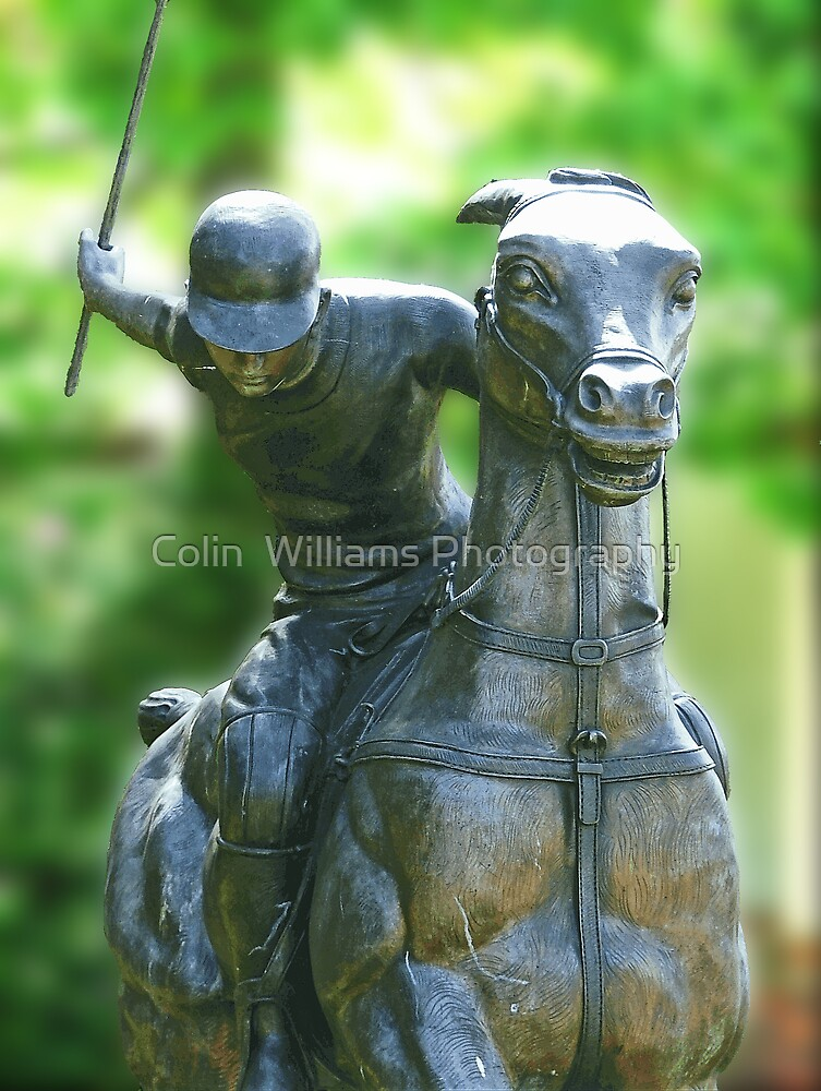 The Polo Player by Colin  Williams Photography
