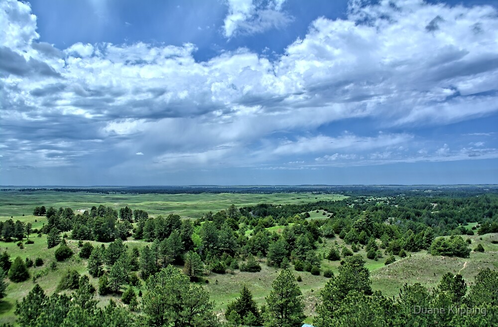 Nebraska National Forest  by Duane Klipping