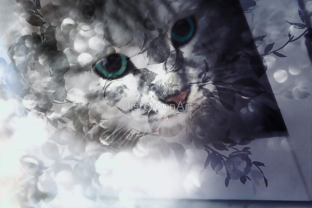 Green-eyed Kitty Peering Through the Cloudy Bush  by DistortionArt