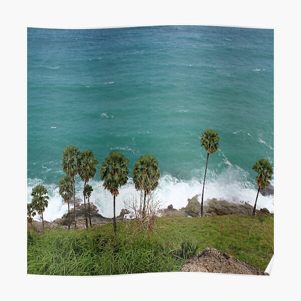 Palm Trees at the Beach Poster