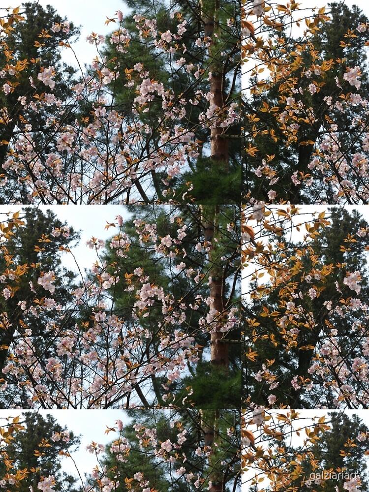 Sakura by galziariart