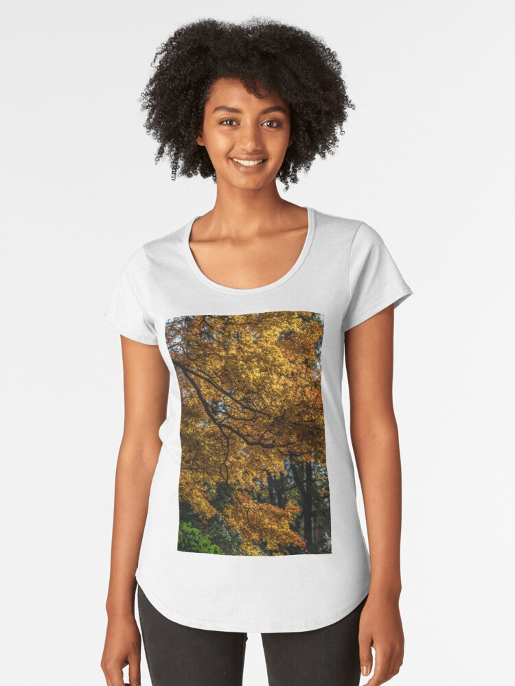 Autumn colours Women's Premium T-Shirt Front
