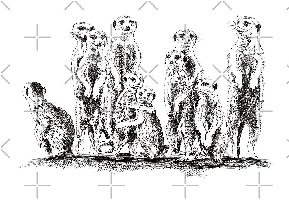 meerkat by Sibo Miller