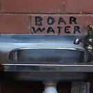 Boar's Water? by Graham Mewburn