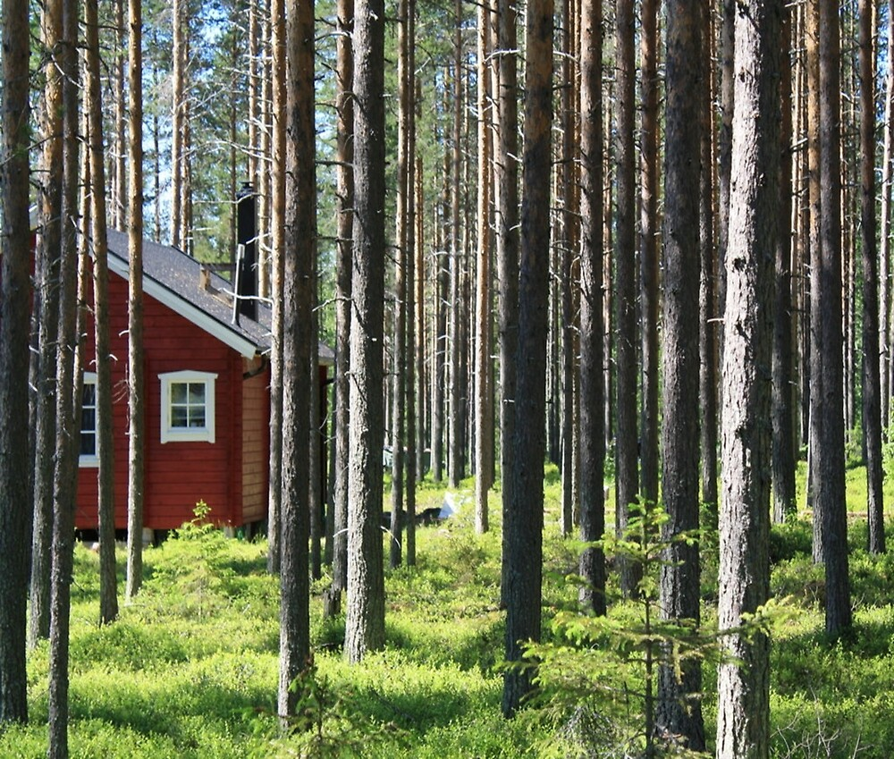 sweden wooden house in forest by Abbie McGrath