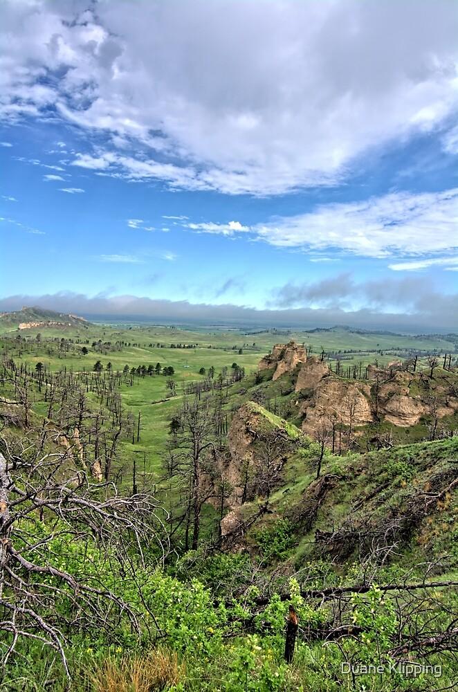 Chadron Hills 2 by Duane Klipping