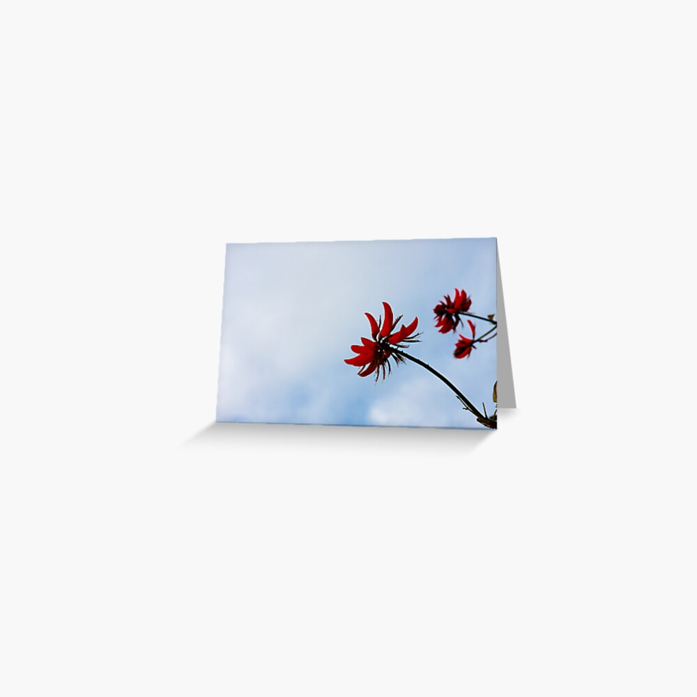 Red like fire Greeting Card