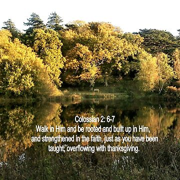 ASHBURNHAM REFLECTIONS/BIBLE VERSE COLOSSIANS; 2 v6-7 (ROOTED) by Shoshonan