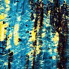 TreeBark Collection Abstract Collection #7 by Philip Johnson