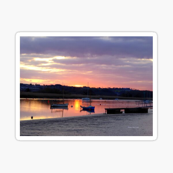 Topsham Estuary Sticker