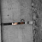Locked In by ahowerton
