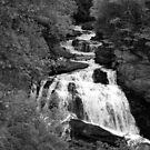 The Cullasaja Falls by Karen Kaleta