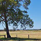 Peel Region Countryside, WA by lezvee