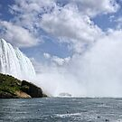 Your Beauty Leaves Me Breathless ~ Horseshoe Falls by Lucinda Walter