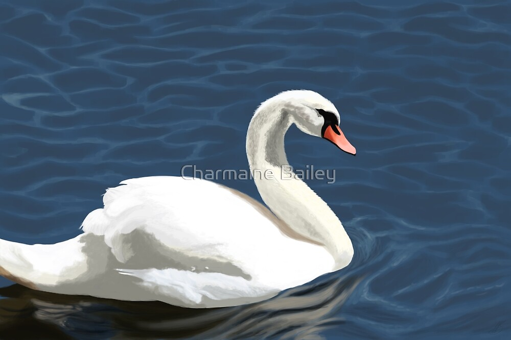 Elegant Swan by Charmaine Bailey