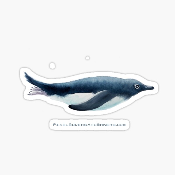 Adélie Penguin Swimming Sticker