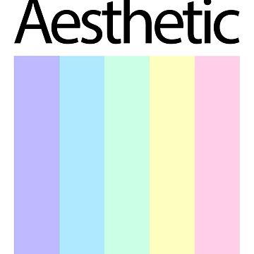 Aesthetic Polaroid Classic by Zayter