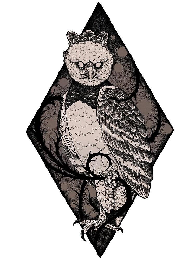 Harpy Eagle by Jon MDC