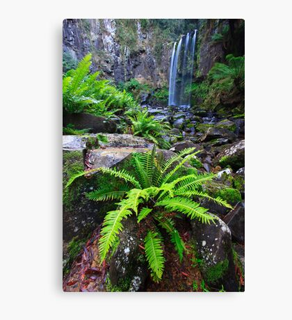 Fern & Falls Canvas Print